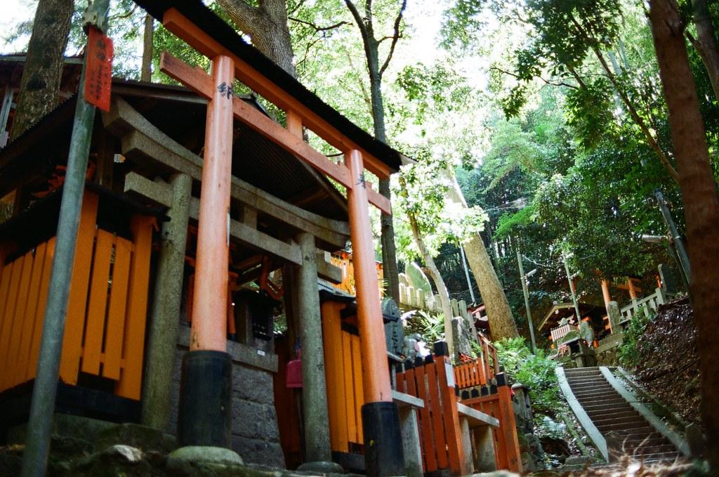 伏見稻荷 京都 Kyoto, Japan / Kodak ColorPlus / Nikon FM2 開始挑戰走稻荷山,還好一路上都包圍在樹林裡。  這應該是祖先住的地方吧,但吸引我注意的是稻荷神狐狸的雕像,這裡有很多!  Nikon FM2 Nikon AI AF Nikkor 35mm F/2D Kodak ColorPlus ISO200 0993-0010 2015/09/29 Photo by Toomore