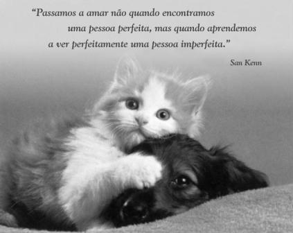 Frase De Amor Y Desamor Jueves 22 3 2012 A Photo On Flickriver