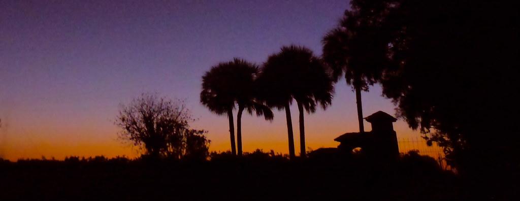 gary-scott-sunrise tags: