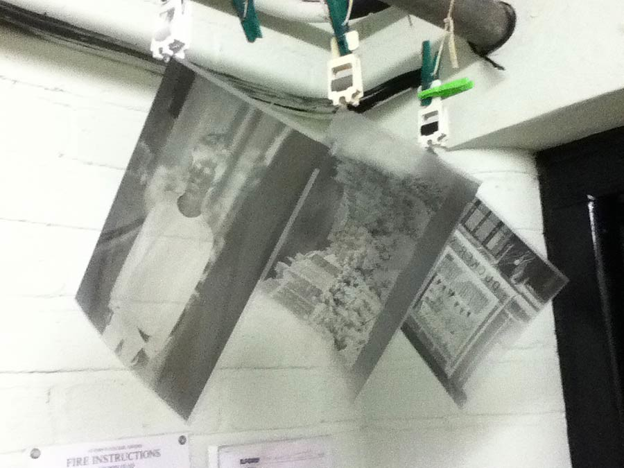 Negatives drying in the darkroom