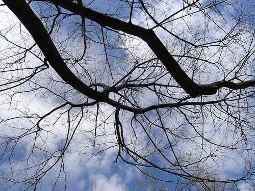 the sky, 3.29.12