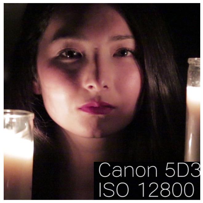 canon5d3_iso12800_100percentcrop
