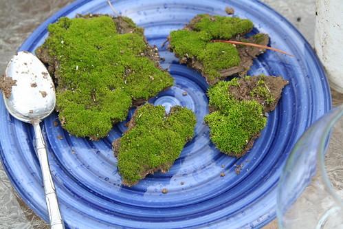 Gathered Moss