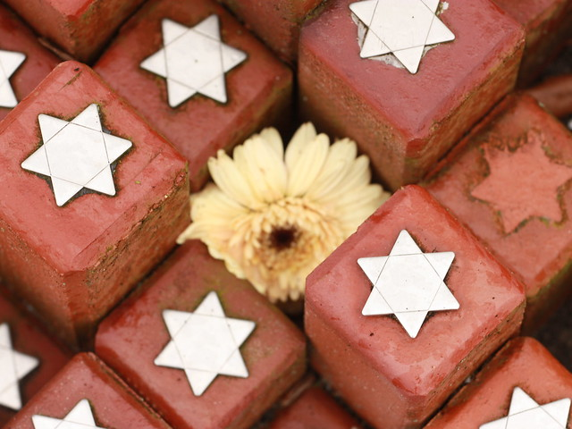 bloemen - flickr