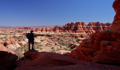 Needles District: Surveying Elephant Canyon