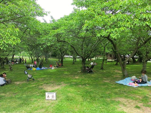 長野県松本市アルプス公園-TOYBOX