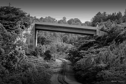 Railroad cut with bridge