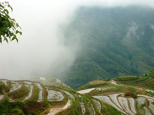 C-Guangxi-Pingan-Terrasse des 7 etoiles (72)