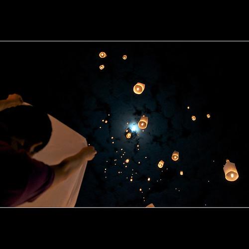 fly lantern fly