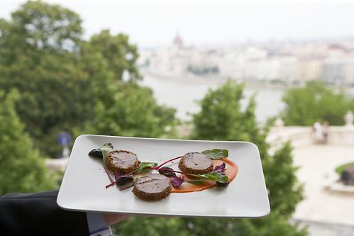 Budavári libamáj