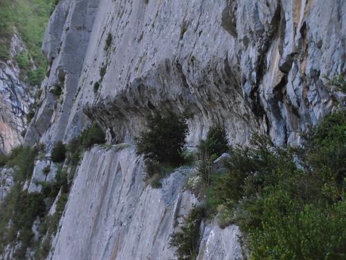 LA MATURE (chemin) 035
