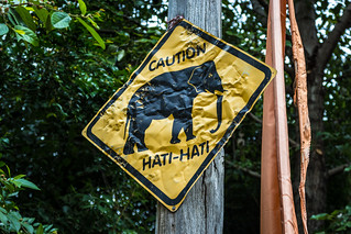 Hati-Hati Street sign with an elefant. From a Zoo in Australia