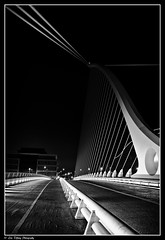 Dublin After Dark (17)  (Samuel Beckett Bridge)
