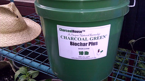Charcoal Green Biochar by Gerris2