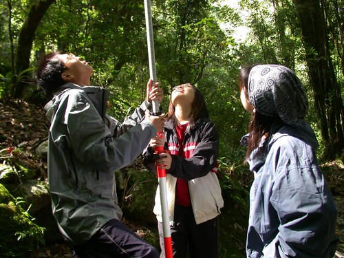 參加楠溪工作隊,在森林裡進行每木調查,地球公民基金會提供