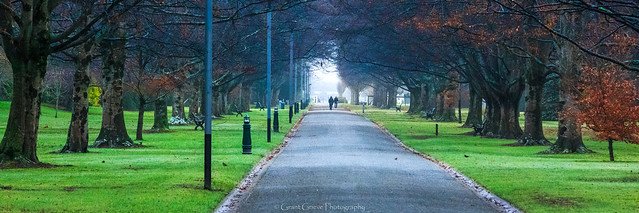 Winters Morning Stroll