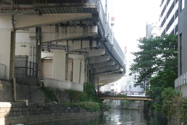 名古屋静脈_09