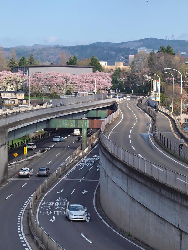春の仲の瀬橋