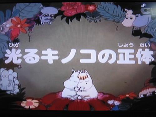 20120507kinoko 003