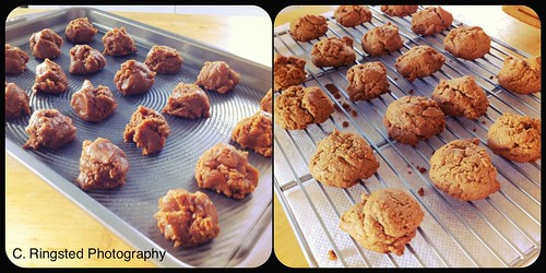 DIY:  Flourless Almond Butter Cookies by Sanctuary-Studio
