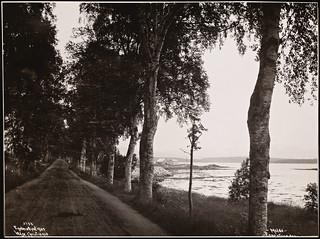 3798. Molde Fanestranden, 1905