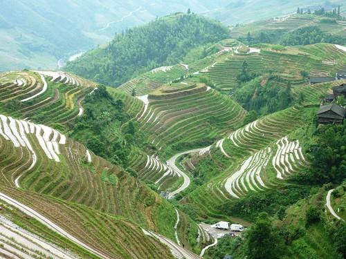 C-Guangxi-Pingan-Terrasse des 9 dragons (23)
