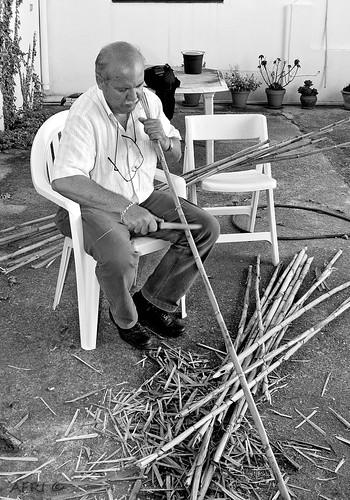 Preparando cañas para las tomateras by Bakalito (Antonio Benítez Paz)