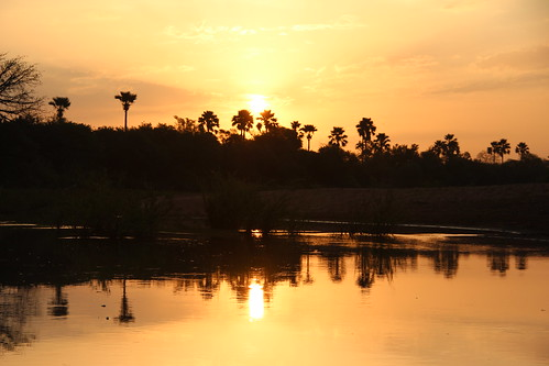 africa holiday water sunrise reflections senegal 2012 gambiariver wassadou
