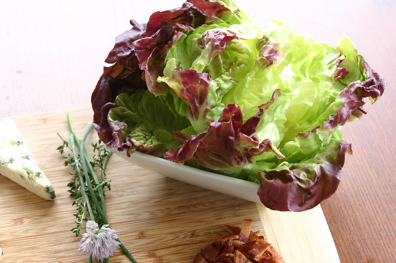 red leaf lettuce & chive flower