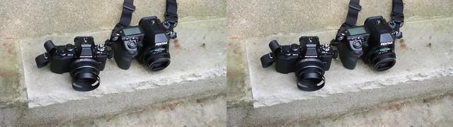 Olympus OM-D EM-5 vs. Pentax K-05 in 3D