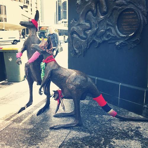 Yarn bombed Roos #yarnbombing @BrisStyle Craft Caravan