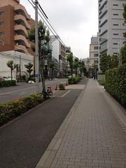 朝散歩(2012/6/1)