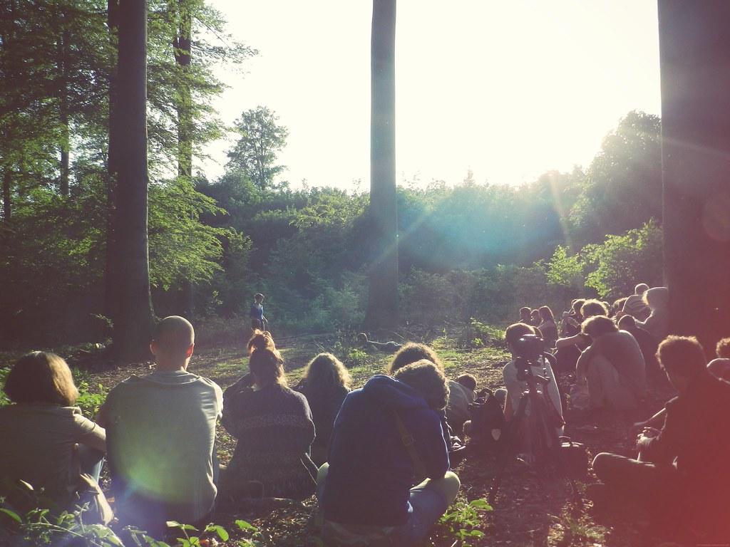 Forêt de Soignes | Zoniënwoud