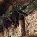 Small photo of Ecomuseo Fucine Morini Mongrando