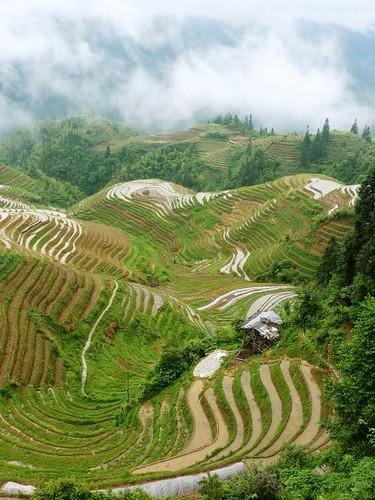 C-Guangxi-Pingan-Terrasse des 7 etoiles (61)