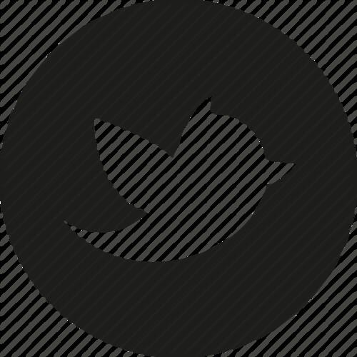 twitter-circle-512[1]