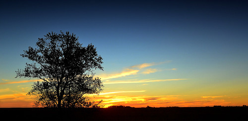 sunset southamerica argentina atardecer tramonto sonnenuntergang pôrdosol ayacucho poniente anoitecer coucherdesoleil entardecer crepúsculo américadosul poente amériquedusud provinciadebuenosaires sudamérica suramérica américadelsur südamerika buenosairesprovince solanet americadelsud americameridionale eduardoamorim elcardal