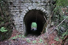 Pfäfers - Wartenstein Tunnel