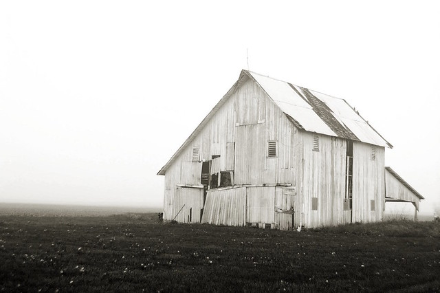 Weathered Barn -- Foggy Morning