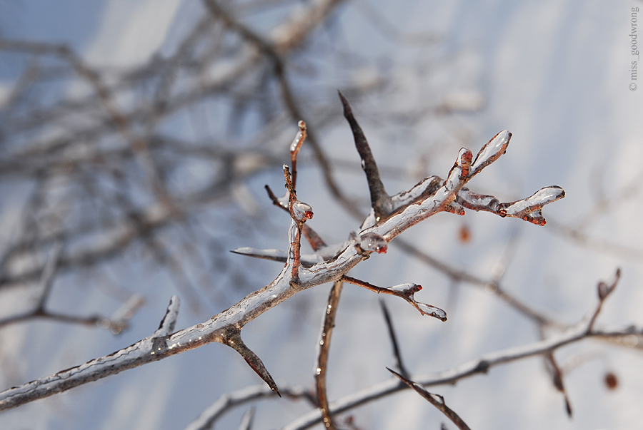 Winter 18