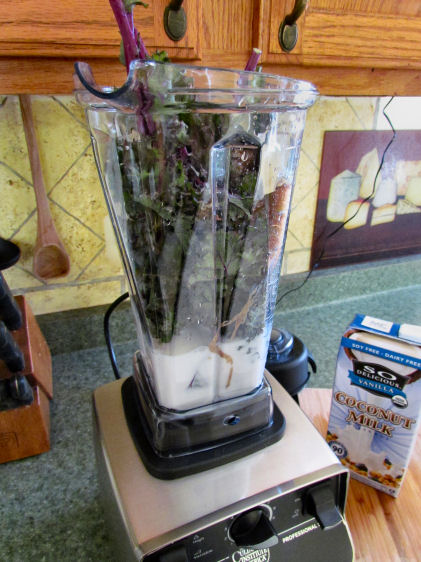 Kale in the Vitamix