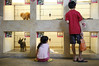 Children look through dogs for sale, on display at a pet shop in Singapore