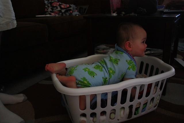 Laundry Basket Vinny