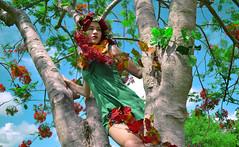 [フリー画像素材] 人物, 女性, 人物 - 樹木 ID:201205310800