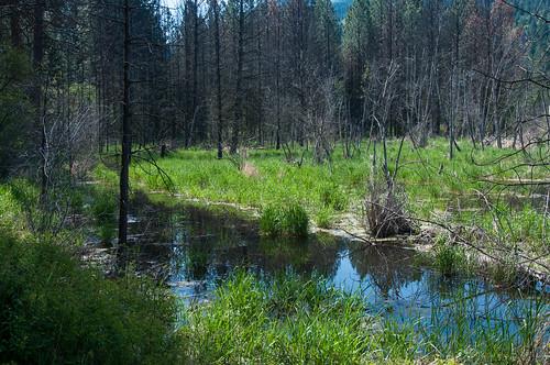 20120513_spokane_libertylake-1