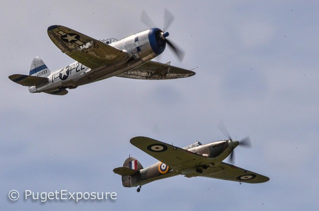 "Down the Centerline Series:  Republic P-47D Thunderbolt ""Tallahassee Lassie"" & Hawker Hurricane Mk.XIIA"