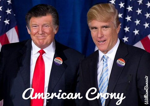 AMERICAN CRONY by Colonel Flick
