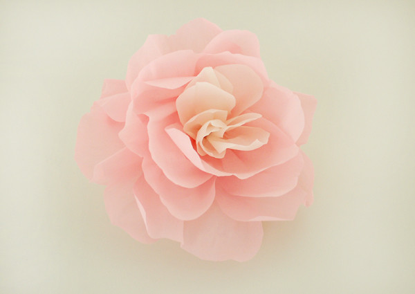 A giant wall flower is my fave guest post from alli for Crepe paper wall flowers
