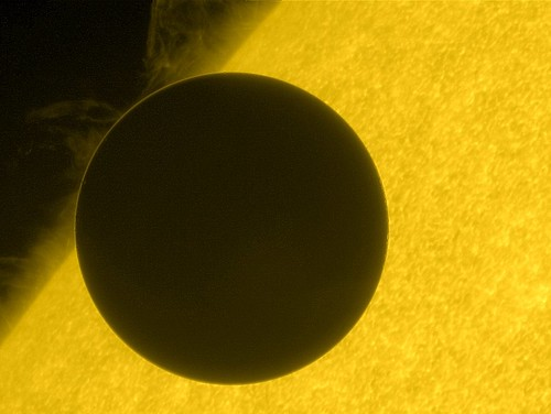 Hinode Views the 2012 Venus Transit