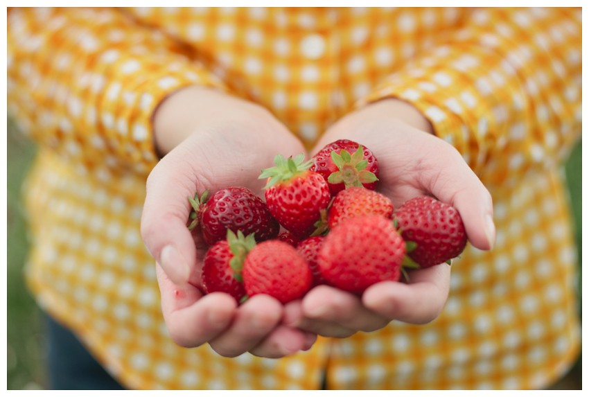 strawberries_010